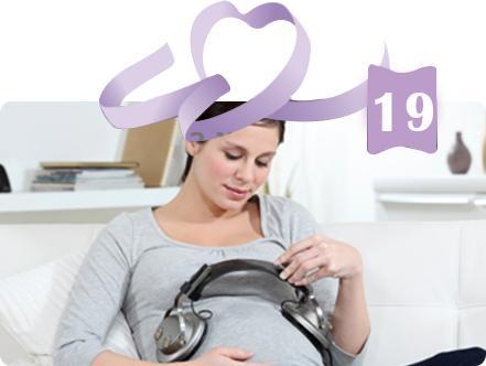 בדיקות חשובות בהריון
