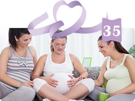 חוג הריון